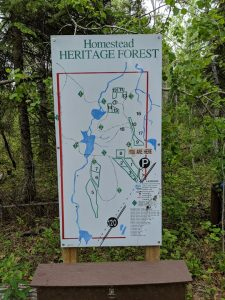 Homestead heritage forest; aschim homestead; hiking in candle lake